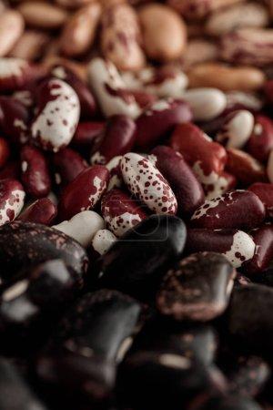 Nahaufnahme von verschiedenen rohen Bohnen