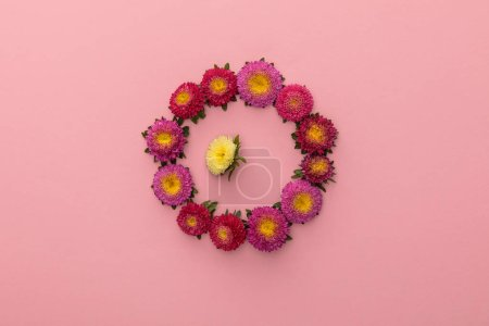 Photo for Wreath of purple asters and one yellow inside on pink background - Royalty Free Image