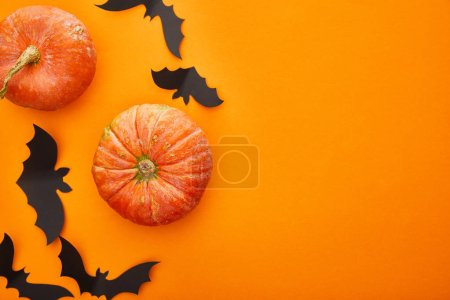 Photo pour Top view of pumpkin, bats on orange background, Halloween decoration - image libre de droit