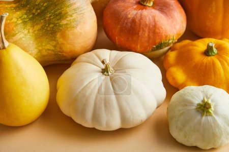 Photo pour Ripe whole colorful pumpkins on beige background - image libre de droit