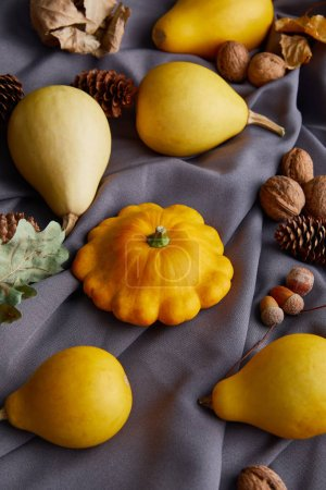 Photo pour Ripe whole colorful pumpkins and autumnal decor on grey cloth - image libre de droit