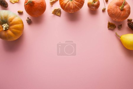 Photo pour Ripe whole colorful pumpkins and autumnal decor on pink background with copy space - image libre de droit