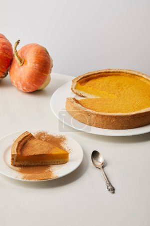 Photo for Tasty pumpkin pie with cinnamon powder near spoon and whole ripe pumpkins on white marble surface isolated on grey - Royalty Free Image