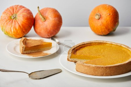 Photo for Delicious pumpkin pie with cinnamon powder near spoon, spatula and whole ripe pumpkins on white marble surface isolated on grey - Royalty Free Image