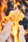 "Постер, картина, фотообои ""selective focus of firewood with fire flames in grill"""