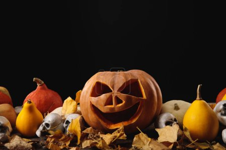 Photo for Halloween pumpkins, autumnal leaves and decorative skulls on wooden rustic table isolated on black - Royalty Free Image