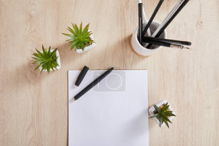 top view of green plants, pencils in holder and white paper with pen on wooden surface