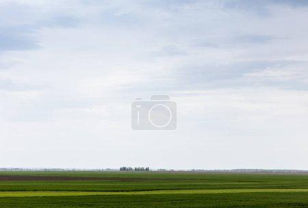 Photo pour Ciel nuageux près de l'herbe verte sur le terrain - image libre de droit
