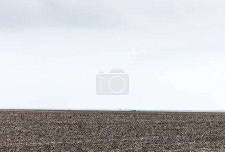 Photo for Land with ground against cloudy sky in summer - Royalty Free Image