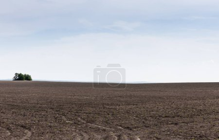 Photo for Land with ground against blue sky and clouds - Royalty Free Image