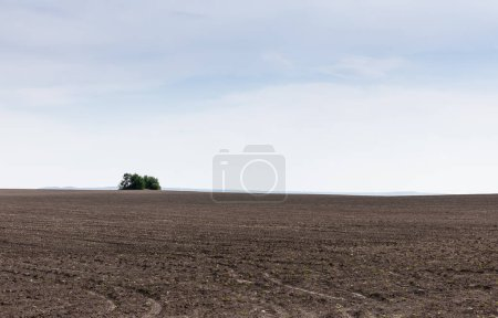 Photo for Ground on land against blue sky and clouds - Royalty Free Image