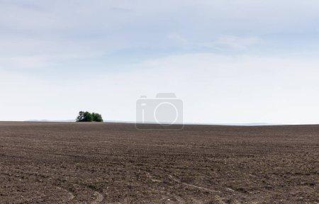 Photo pour Sol sur terre contre ciel bleu et nuages - image libre de droit