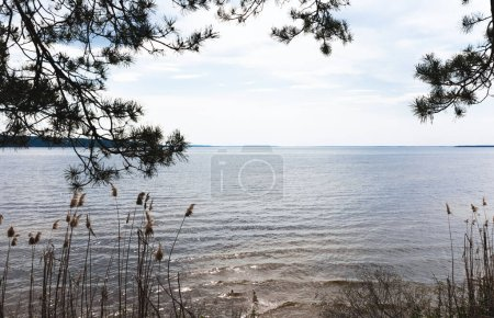 Photo for Sunlight on lake against blue sky with clouds - Royalty Free Image