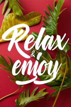 top view of tropical green leaves on red background with relax and enjoy illustration