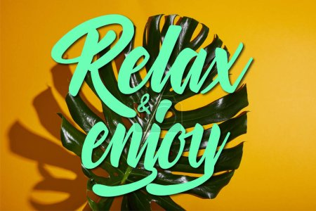 top view of tropical green leaf on yellow background with relax and enjoy illustration