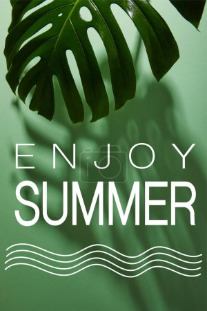 fresh tropical leaf on green background with enjoy summer illustration