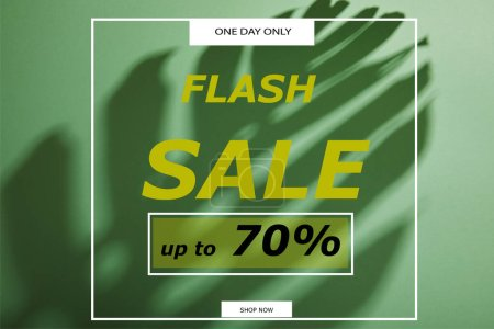 tropical leaf shadow on green background with flash sale illustration