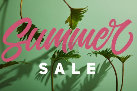 fresh tropical green leaves on green background with summer sale illustration