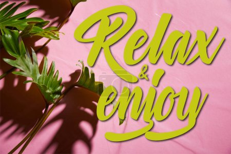 top view of fresh tropical green leaves on pink plastic background with relax and enjoy illustration