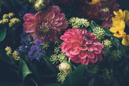 Foto de Flores otoño mágico ensueño hermosa hada con fondo de hojas oscuras. - Imagen libre de derechos