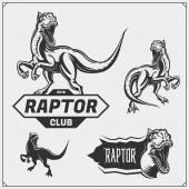 Raptor dinosaur mascot Raptor emblems and logos for sport-club Print design for t-shirt