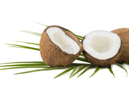 A close-up picture of chopped in half and whole coconuts isolated on white background. The concept of exotic fruits with leaves full of vitamins.