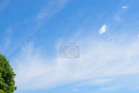 Photo for Blue cloudy sky , summer morning. - Royalty Free Image