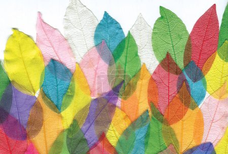 Photo for Beautiful unusual background of colored leaves - Royalty Free Image