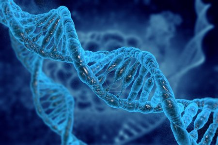 Photo for DNA molecules on medical background in 3D illustration. - Royalty Free Image