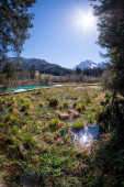 Lake Zelenci and Ponce mountains in nature reserve in Slovenia