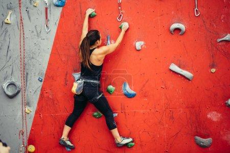 Photo pour Attrayant grimpeur féminin sportif accroché à des poignées, des goujons et des crochets de mur de rocher artificiel coloré dans la salle de fitness, vue arrière. - image libre de droit