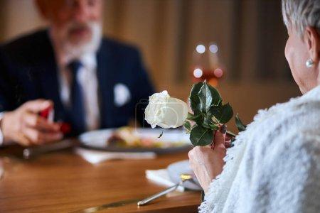 Photo pour Homme gris de race blanche dans tuxedo offre de se marier. Joli visage de mâle. Une femme garde une rose blanche dans les mains - image libre de droit