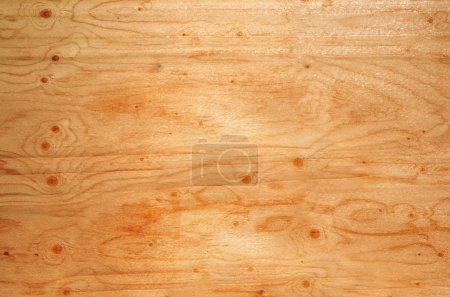 wood texture and natural pattern