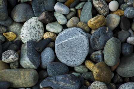 Colored Sea gravel pebbles...