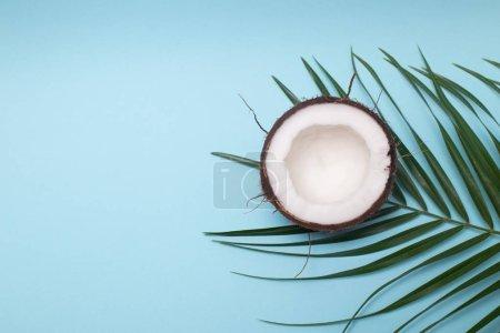 Photo pour Feuilles de palmier et noix de coco sur fond bleu pastel vue de dessus - image libre de droit