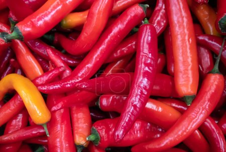 Hot Red peppers background...