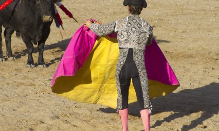 fighter, bullfight, traditional Spanish party where a matador fighting a bull
