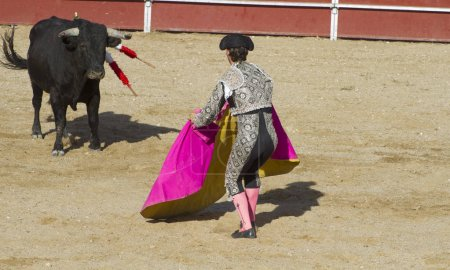courage, bullfight, traditional Spanish party where a matador fighting a bull