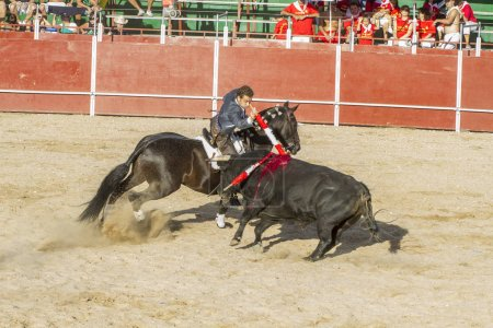 Madrid, SPAIN - September 10, 2010: bullfight with horses, also known as rejoneadores. traditional spanish festival where the man faces a brave bull in the sand
