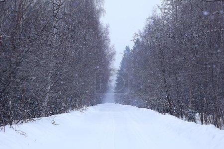 Photo pour Paysage brumeux d'hiver avec des chutes de neige et forêt, froid saisonnier - image libre de droit
