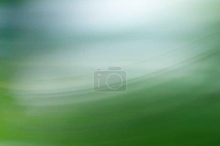 Photo for Spring light blurred design, summer background - Royalty Free Image