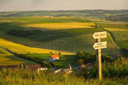 Photo pour Panneaux de direction dans un champ près du cap Gray nez - image libre de droit