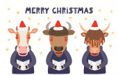Hand drawn card with cute cow bison yak singing carols  with quote Merry Christmas isolated on white background Scandinavian style flat design Concept for kids print
