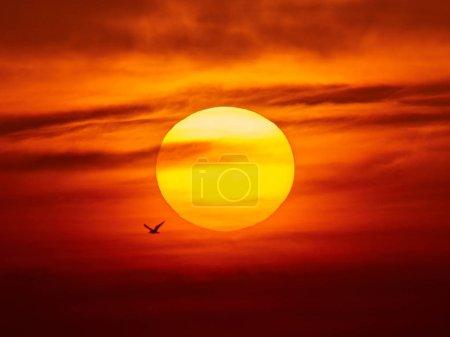Photo pour Grand soleil couchant magnifique. Bonsoir, météo. Ciel avec des nuances de jaune, rouge, rose et orange - image libre de droit