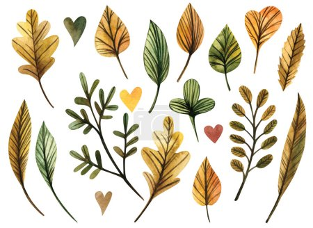 Photo pour Collection belles feuilles d'automne colorées isolées sur fond blanc. Illustrations aquarelle . - image libre de droit