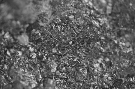 Abstract Black-and-white background. Texture natur...