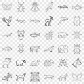 Insect icons set outline style