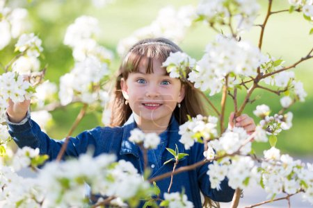 A little girl of 5 years of age in a jeans dress among the flowers in a spring apple orchard.