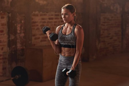 Photo for Fitness workout. Woman doing arm exercise with dumbbell at gym. Portrait of girl athlete with fit body in stylish active wear doing dumbbell biceps curl workout on training indoors - Royalty Free Image