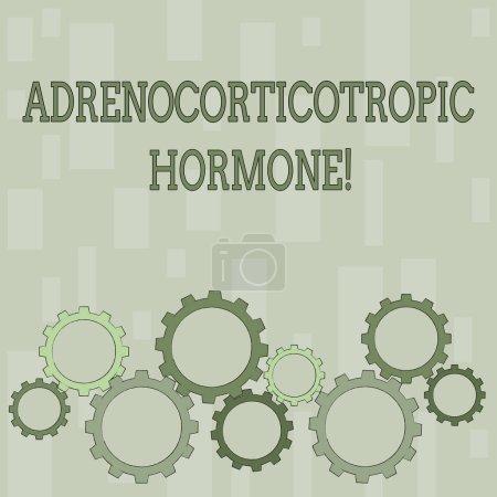 Textschreiben adrenokortikotropes Hormon. Geschäftskonzept für Hormon von Hypophysenrinde sezerniert bunte Zahnradschaltung eingreifend, ineinander greifend und tesselating flachen Stil.